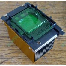 Радиатор HP p/n 279680-001 (socket 603/604) - Березники