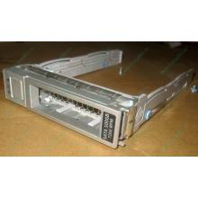 Салазки Sun 350-1386-04 в Березниках, 330-5120-04 1 для HDD (Березники)