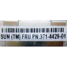 Серверная память SUN (FRU PN 371-4429-01) 4096Mb (4Gb) DDR3 ECC в Березниках, память для сервера SUN FRU P/N 371-4429-01 (Березники)